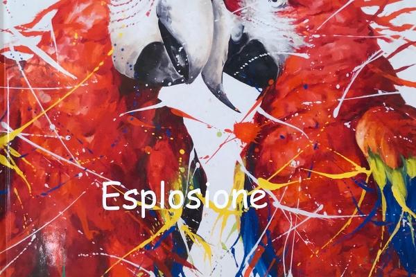 Explosion-2018